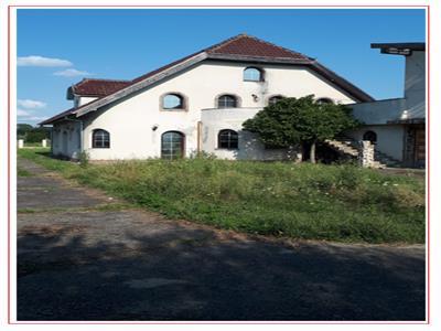 Casa deosebita in Timisoara cu teren 5000 mp